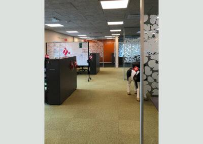 Kontor & Administration: Præsentabel domicilløsning i individuelle kontor moduler